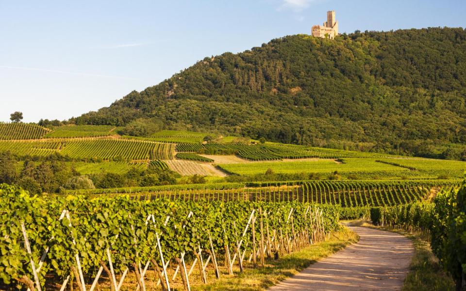 Vibrante Alsace !