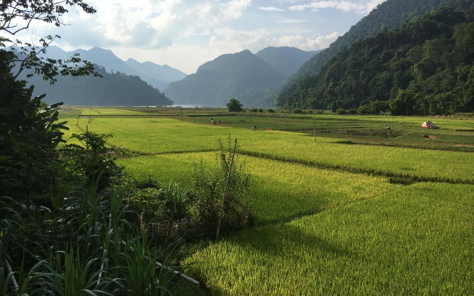 Découverte et immersion en pays Dao